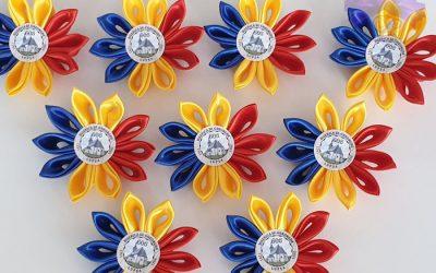 Cocarde tricolore, Lidardi, CTFS 1